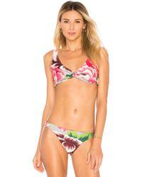 Bikini model ambra are