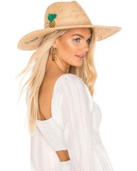 Hat Attack Tropical Party Continental Hat - Multicolour