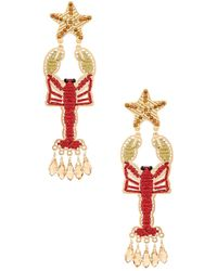 Mercedes Salazar Isla Lobster Earring - Rot