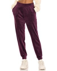 1.STATE Velour Pant - Lila