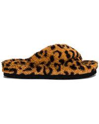 Steve Madden Тапочки Fuzed В Цвете Леопард - Коричневый