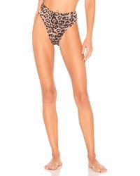 Frankie's Bikinis Juju Bottom - Braun