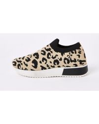 River Island - Leopard Print Knitted Runner Trainers - Lyst