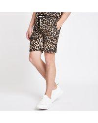 Criminal Damage River Island Leopard Print Shorts - Brown