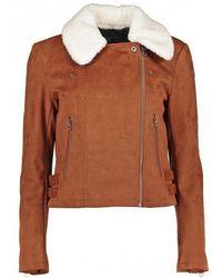 French Connection Amaranta Shearling Suedette Jacket - Casablanca / 8 - Brown
