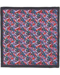 Robert Graham Tropical Darth Silk Scarf - Blue
