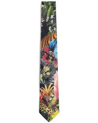 Roberto Cavalli Paradise Found Print Tie - Blue
