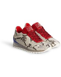 Roberto Cavalli Snakeprint Lace Up Sneakers - Red