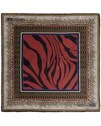 Roberto Cavalli Animal Foulard Print Silk Scarf - Brown