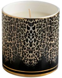 Roberto Cavalli Queen Of Sicily-print Scented Candle - Black