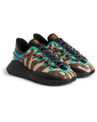 Roberto Cavalli Zebra-print Low-top Sneakers - Black
