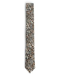 Roberto Cavalli Leopard Print Tie - Multicolour