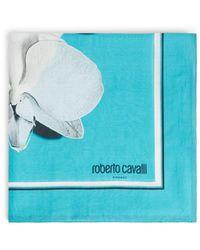 Roberto Cavalli Orchid Print Scarf - Blue