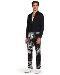 Roberto Cavalli Jeans mit heritage tiger print - Schwarz