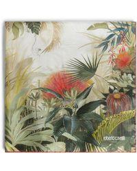 Roberto Cavalli Seidentuch mit Le Monde Vegetale Print - Grün