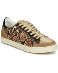 Betty London Permina Shoes (trainers) - Brown