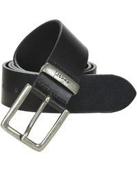 Levi's Levis New Albert Belt - Black