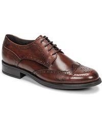Carlington Louvian Casual Shoes - Brown