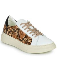 Betty London Parole Shoes (trainers) - White