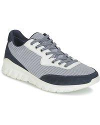 Paul & Joe Repper Shoes (trainers) - Blue