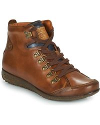 Pikolinos Lisboa W67 Shoes (high-top Trainers) - Brown