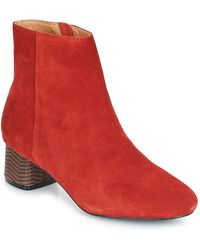 André Euforia Low Ankle Boots - Red