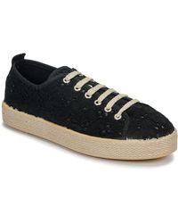 Betty London Marissou Shoes (trainers) - Black