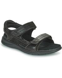 Clarks Nature Trek Sandals - Black