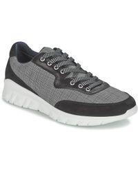 Paul & Joe Repper Shoes (trainers) - Black