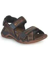 Clarks Wave2.0 Jaunt Sandals - Brown