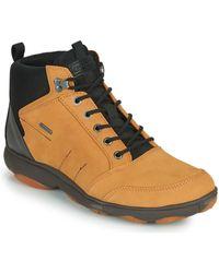 Geox U Nebula 4 X 4 B Abx Shoes (high-top Trainers) - Brown