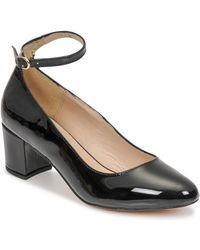 Freya Prisca Court Shoes - Black