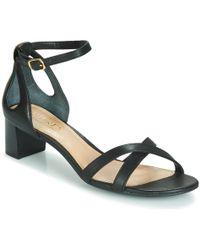 Lauren by Ralph Lauren Folly Sandals - Black
