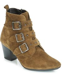 André Tracy Low Ankle Boots - Green
