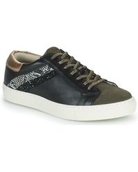 Betty London Pitinette Shoes (trainers) - Black