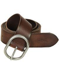 Levi's Calneva Belt - Brown