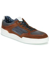 Casual Attitude Melissi Shoes (trainers) - Brown