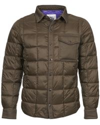 U.S. POLO ASSN. Padded Jacket - Brown