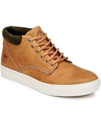 Timberland Adventure 2.0 Cupsole Chk Shoes (high-top Trainers) - Brown