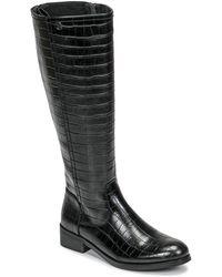 Chattawak Alabama High Boots - Black