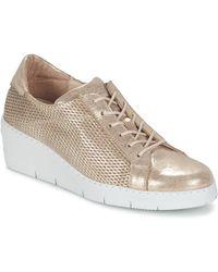 Hispanitas - Daoci Shoes (trainers) - Lyst
