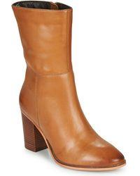 Les Tropéziennes Par M Belarbi Livana Low Ankle Boots - Brown