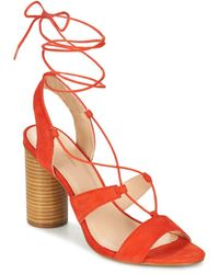 Mellow Yellow Brune Sandals - Orange