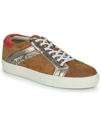 Betty London Pitinette Shoes (trainers) - Brown