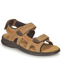 Clarks Hapsford Trail Sandals - Brown