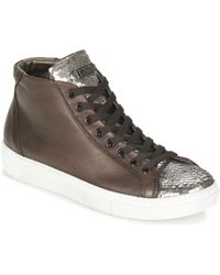 Tosca Blu Alexa Shoes (high-top Trainers) - Brown