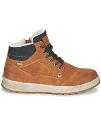 Tom Tailor 81602-cognac Shoes (high-top Trainers) - Brown
