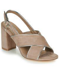 Xti Sandals - Brown