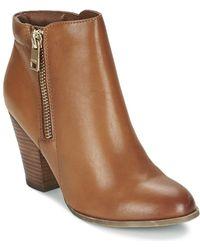 ALDO Janella Women's Low Ankle Boots In Brown