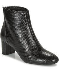 André Leaders Low Ankle Boots - Black
